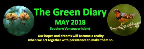 Green Diary May